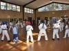 kids-karate-forestville